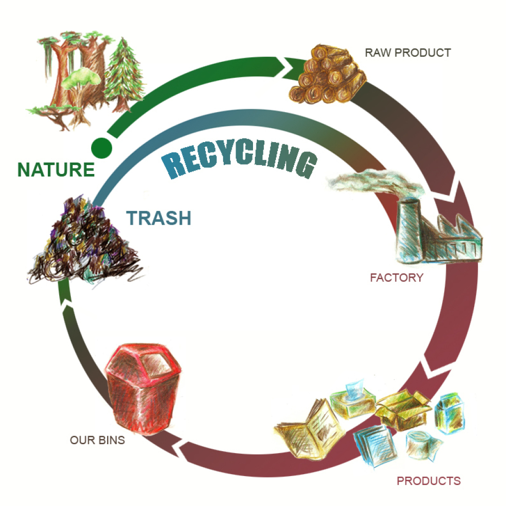 GRAPHIC SHOWING THE CYCLE OF PRODUCTION AND RECYCLING - FROM NATURE TO THE FACTORY TO THE BIN TO THE TRASH AND RECYCLING IS MAKING PRODUCTS FROM TRASH